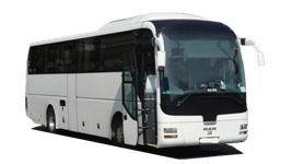 Meet the Werner Coachs Fleet of Charter Buses and Mini Buses